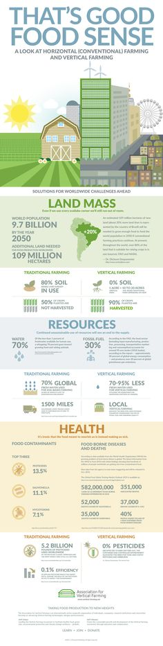 Vertical Farming Infographics Food Sense infographic 090615 AVF