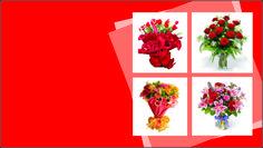 Floricultura 0027