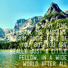 You're a very fine person, Mr. Baggins, and I'm quite fond of you. But you are really just a little fellow, in a wide world after all. Hobbit Quotes, Book Quotes, Favorite Quotes, Favorite Things, The Hobbit Movies, Verbatim, Bilbo Baggins, Wide World, Tolkien