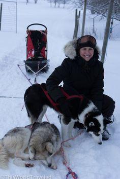 OVERNIGHT DOG SLEDDING IN STRÖMSUND, SWEDEN