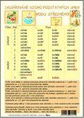 Skloňování vzorů podstatných jmen rodu ženského + Skloňování vzorů podstatných jmen rodu středního • Karta s přehledem učiva Periodic Table, Diagram, Periodic Table Chart, Periotic Table