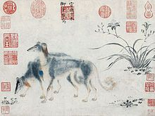 The Saluki, also known as the Royal Dog of Egypt and Persian Greyhound,  is one of the oldest known breeds of domesticated dog. From the period of the Middle Kingdom onwards, Saluki-like animals appear on the ancient Egyptian tombs of 2134 BC. They have connections both to the Bible and Imperial China. Modern breeding in the west began in 1895 when Florence Amherst imported a breeding pair of Salukis from Lower Egypt and began working to popularize the breed.