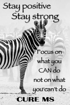 Multiple Sclerosis true... focus on what you can do,  even the little things count..  #MultipleSclerosis #msawarenes #curems #msstrong https://www.facebook.com/msmemesandmore/photos/a.442703572584474.1073741827.442627485925416/508424579345706/?type=3&theater