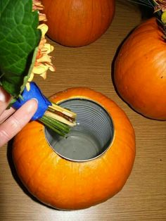 Pumpkin Flower Vase - cut a hole to fit any size can you wish depending on size of your pumpkin. Scrape out flesh and seeds and slip can inside pumpkin. Add water to the pumpkin/can and place the flowers inside! Thanksgiving Decorations, Seasonal Decor, Halloween Decorations, Thanksgiving Crafts, Cheap Fall Decorations, Fall Yard Decor, Fall Harvest Decorations, Fall Harvest Party, Thanksgiving Flowers