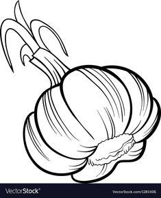 Garlic vegetable cartoon for coloring book vector image on VectorStock Coloring Books, Coloring Pages, Vegetable Cartoon, Pewter Art, Cartoon Butterfly, Black And White Cartoon, Stock Foto, Drawing Skills, Art Drawings