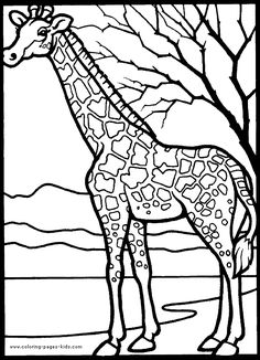 Zoo Animals Coloring Pages Zoos Animal and Activities
