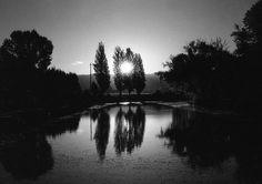 Ilford sfx20 Kodak hc110 diluizione B. #analoguephotography #infared #ilfordSFX200 #blackandwhite #ilfordfilm (scheduled via http://www.tailwindapp.com?utm_source=pinterest&utm_medium=twpin&utm_content=post79532045&utm_campaign=scheduler_attribution)