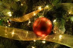 5 Tips to get into the Holiday Spirit!