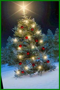 christmas village sets Lemax Christmas Village Accessories 22+ Christmas Village Sets 2020 Christmas Village Sets, Christmas Scenes, Noel Christmas, Country Christmas, Christmas Pictures, All Things Christmas, Winter Christmas, Christmas Lights, Vintage Christmas