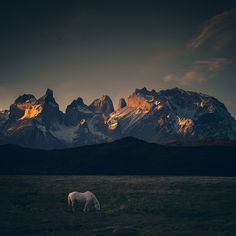 Photographer Travels To The Edge Of The World To Capture The Breathtaking Beauty Of Patagonia | Bored Panda