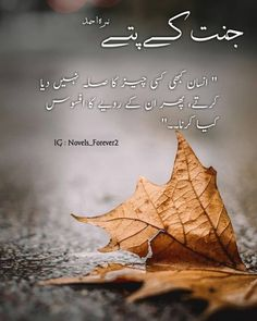 #jkpianz #jkpians4ever #jkpians #jkpian #jkp #jkpnovel #jahansikandar #jahan #hayasuleman #haya #jannatkpattay #jannatkaypattay… Funny Attitude Quotes, True Feelings Quotes, Feelings Words, Poetry Feelings, Reality Quotes, Mood Quotes, Poetry Quotes In Urdu, Best Urdu Poetry Images, Urdu Quotes