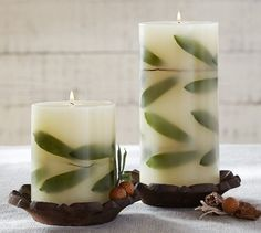 olive branch botanicals | Botanical Pillar Candle - Napa Harvest | Pottery Barn