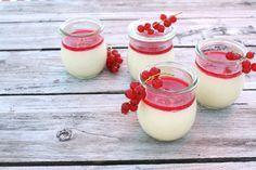 Joghurt-Panna cotta mit Johannisbeeren I