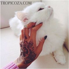 We are taking care of nature!TROPICOZA.COM - cruelty free brand!  #musthave #makeup #new #natural #best #beauty #beautiful #beautyblogger #vegan #cute #like #love #hair #girl #girls #fashionblogger #fit #fitness #detox #skincare #style #perfect #organic #thailand #tropicoza #coconutoil