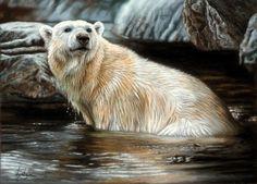 Polar Bear Illustration, Bear Art, Antarctica, Animal Paintings, Fine Art, Drawings, Artwork, Polar Bears, Geek
