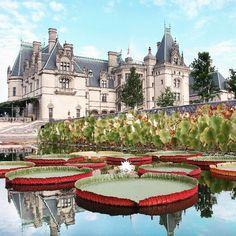 Don T Miss The Beauty In Biltmore S Italian Garden Estate Asheville Nc