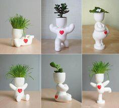 terrarium shell cactus ideas diy - Buscar con Google