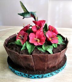 Hummingbird Planter Cake - Mother's Day chocolate & peanut butter 'planter' cake. Rice Krispie hummingbird with edible paper wings, gumpaste flowers & wood, and Oreo crumb soil.