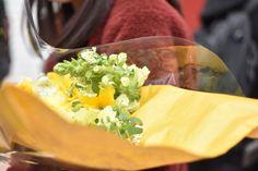 [P]植物の造形といえば、なもの 花束を君に贈ろう。
