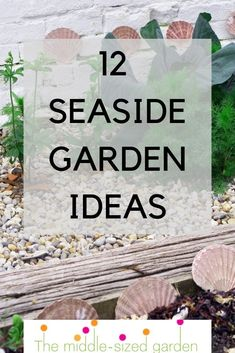 Lots of easy seaside garden ideas, the best beach garden plants, real-life coastal gardens for inspiration and tips for seaside garden design. Beach Theme Garden, Backyard Beach, Seaside Garden, Seaside Theme, Coastal Gardens, Beach Gardens, Front Gardens, Small Gardens, Colorful Garden