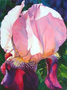 Gallery of Original Watercolors on Watercolor Paper - Ann Pember - Ann Pember