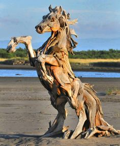 Artist Jeff Uitto. Uses driftwood he finds on the coast of Washington.