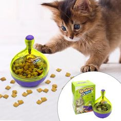 Interactive Cat Treat Dispenser Ball Toy for Playing/Training http://www.trendstuff.co/products/interactive-cat-treat-dispenser-ball-toy-for-playing-training?utm_campaign=crowdfire&utm_content=crowdfire&utm_medium=social&utm_source=pinterest