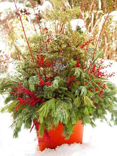 Several varieties of pine boughs and juniper combine dramatically in a bright red pot with sprays of winterberry and redtwig dogwood.