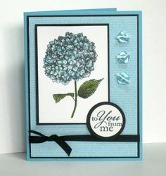 Hydrangea by dpetersen - Cards and Paper Crafts at Splitcoaststampers