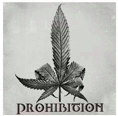 Stop prohibition  www.cbdlifestore.com