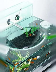 can you imagine washing your hands in a fish tank sink??? how cool would that be? lol