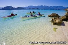 Sea kayaking in the Sea of Cortez, Baja Mexico, and whale watching in the Pacif