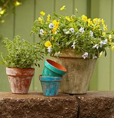 Plain terra-cotta garden containers gain weathered-over-time style with our 3 easy techniques.