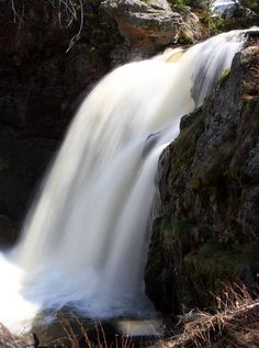 Moose Falls ---- 2009 LocationYellowstone National Park, Teton County, Wyoming USA Coordinates44°09′08″N 110°40′20″W TypePlunge Total height30 feet (9.1 m) WatercourseCrawfish Creek