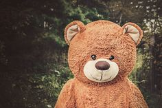 Because who doesn't love a stuffed bear? What will you write? Submit Today: https://hauntedwaterspress.submittable.com/submit Picture by Ryan McGuire