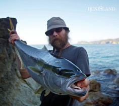 Kingfish Off The Rocks VII – Great Barrier Island