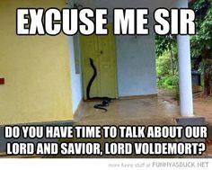 Voldemort Door-to-Door