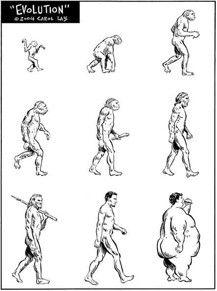 Evolution.jpg (217×291)