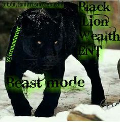 Black Lion Wealth ENT Beast mode