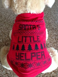 DOG CHRISTMAS TEE  Doggie Christmas Shirt. Perfect for your precious pooch! $15  by BlissDesignCompany