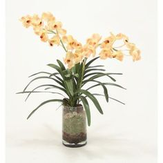 Distinctive Designs Waterlook Vanda Orchid Silk Floral with Orchid Bark in Glass