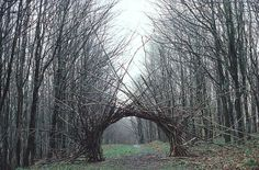 Andy Goldsworthy -- Woven branch arch Langholm, Dumfriesshire April 1986 ( also in south-west Scotland - http://www.stridingarches.com/ )