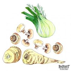 Hennie Haworth | Meiklejohn Mushroom Pasta, Mushroom Food, Cake Drawing, Food Illustrations, Food Photography, Stuffed Mushrooms, Food And Drink, Drawings, Fennel