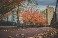 Нью-Йорк | New York #newyork #usa