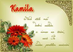 Kamila Nech stále máš dobrú náladu a úsmev na tvári, nech Ťa žiaden problém neskvári