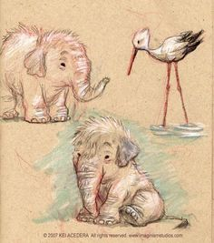These are some more animal drawings from a while ago. There was this super cute elephant at the 'African Lion Safari' in Ontario. More animal sketches Elephant Love, Elephant Art, Bird Drawings, Animal Drawings, Drawing Animals, Elephant Drawings, Animal Sketches, Art Sketches, Art Kawaii