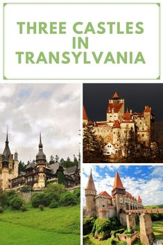 Three Castles in Transylvania Enjoy the only tour that offers you the opportunity to visit 3 awe-inspiring castles and the historical city of Brasov in one day. Then take a walk in the Old Town of Brasov where you will hear legends at every corner and pass by the most important landmarks like Catherine's Gate, Schei Gate, the Synagogue from 1901 and the Black Church, the largest Gothic cathedral between Vienna and Istanbul. Romania Tours, Gothic Cathedral, Black Church, Bucharest, Cool Places To Visit, Vienna, Day Trips, Old Town, Castles