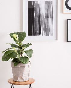 Our CR styling team give their tips on how to style frames and inspire you to create your very own gallery wall. On the journal at livewithus.com.au #countryroadstyle #CR_livewithus