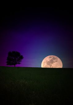 The perfect Moon - Moon rising