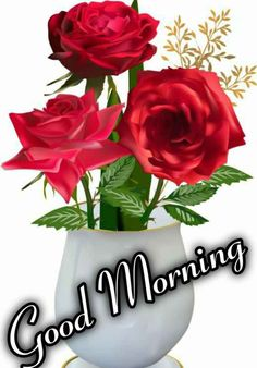 Good Morning Flowers Pictures, Good Morning Roses, Cute Good Morning, Good Morning Messages, Morning Wish, Morning Quotes, Summer Flower Arrangements, Summer Flowers, Good Night Wallpaper